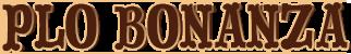 PLO Bonanza Tournament
